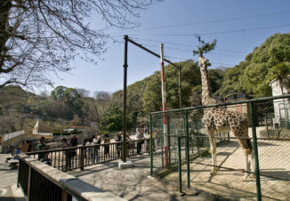 福岡市動植物園